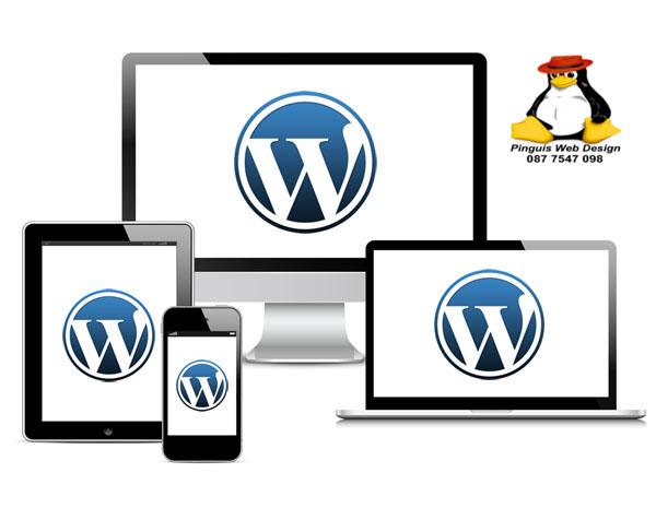 Wordpress focused Website Design Cork and Kerry